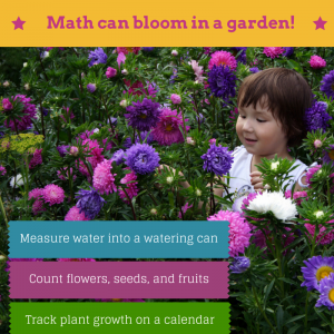 math can bloom in a garden