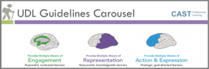 UDL guidelines carousel