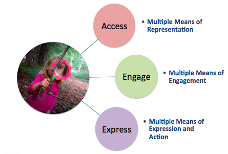 access engage express