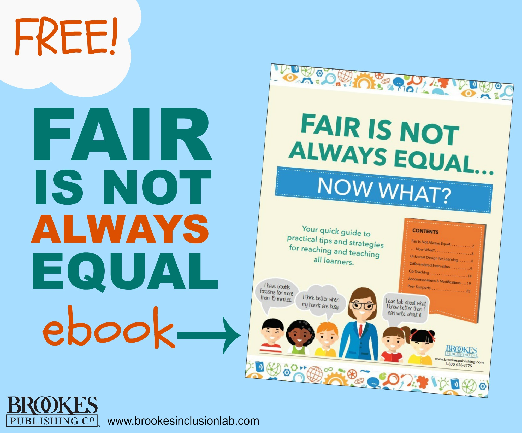fair is not always equal inclusion ebook