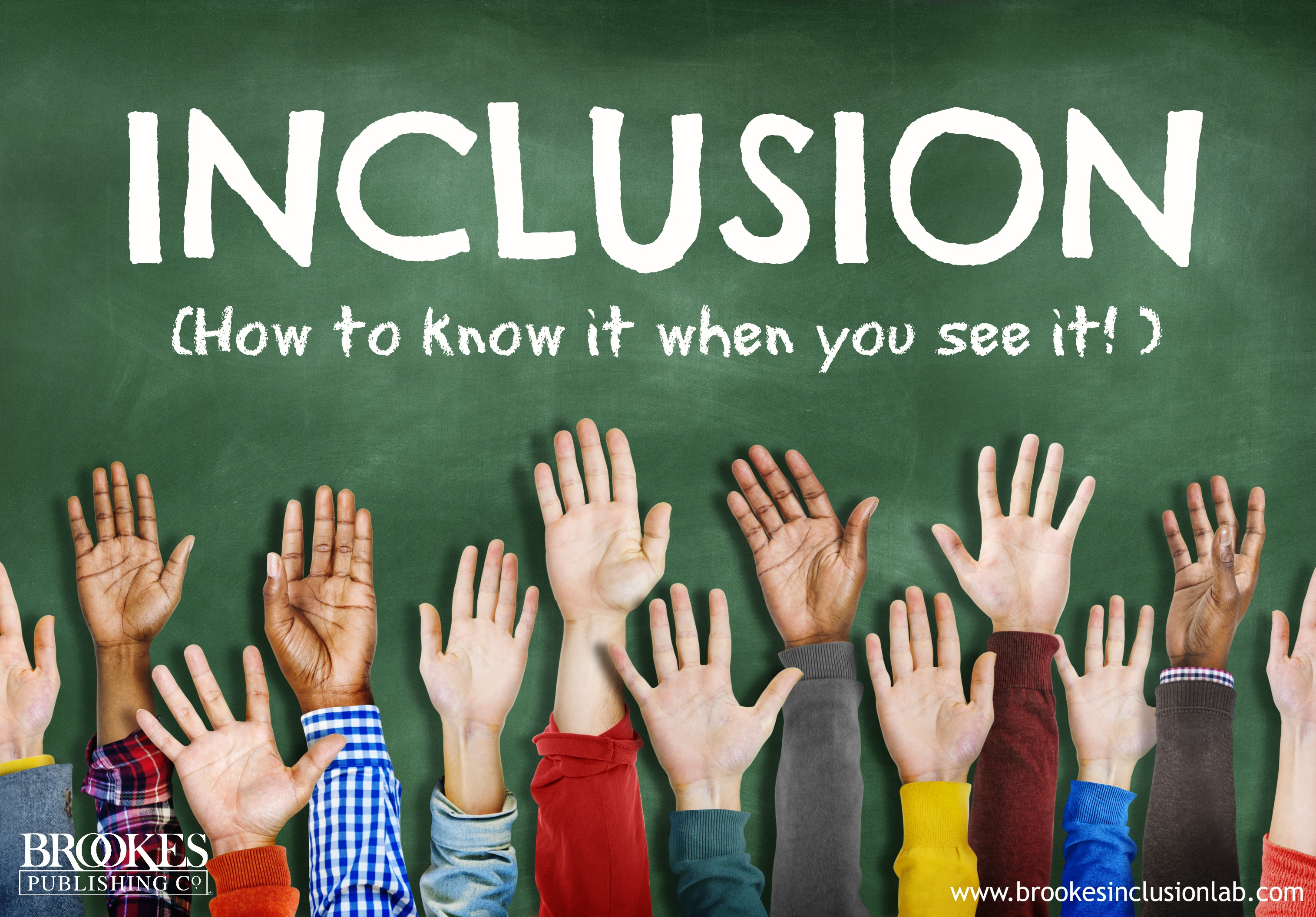 Inclusion: How to Know It When You See It
